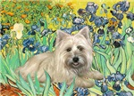 IRISES<br>& Cairn Terrier