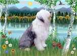 BIRCHES BY THE LAKE<br>& Old English Sheepdog