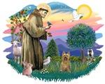 St. Francis #2 &<br> Silky Terrier (B)