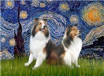 STARRY NIGHT<br>& Two Shetland Sheepdogs