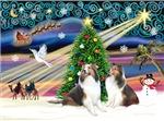 CHRISTMAS MAGIC<br> & TWO SHELTIES