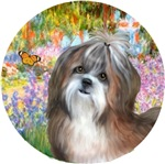 Shih Tzu #8<br>Garden at Giverney