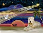 CHRISTMAS STAR<br>& Wheaten Terrier (#1)