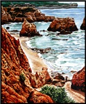 Rock Beach Landscape