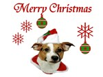 JRT Holiday: Christmas Greetings