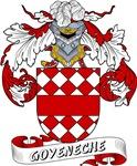 Goyeneche Family Crest / Goyeneche Coat of Arms