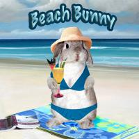 Beach Bunny Products