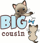 Big Cousin - Kitty