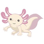 Cute Axolotl