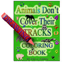 Animals & Animal Tracks Coloring & Activity Books