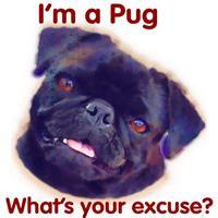 I'm a Pug - Black