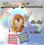Bingo Heaven pomeranian