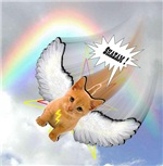 Heaven Bound Kitty