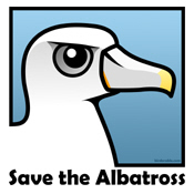Save the Albatross (close-up)