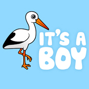 It's A Boy Stork Cards & Maternity