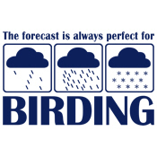 The Forecast for Birding