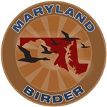 Maryland Birder