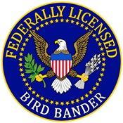 Licensed Bird Bander