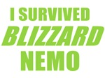 I Survived Blizzard Nemo