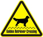 Golden Retriever Crossing