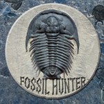 Fossils/Geology