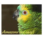 Amazons are easy!