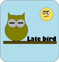 Late bird