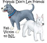 Friends Don't Let Friends Fall Victim to BSL