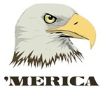 American Bald Eagle For Merica