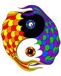 7. Yin Yang Fish