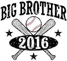Big Brother 2016 Baseball t-shirt