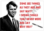 Robert F Kennedy: Why Not