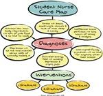 Student Nurse Care Map