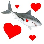 Shark with Hearts