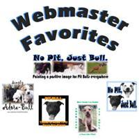 Webmaster Favorites
