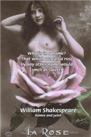 William Shakespeare Quote: What's in a Name?