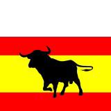 Spain Bull Flag