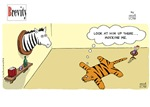 Brevity Tiger and Zebra