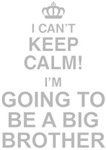 I Can't Keep Calm! I'm Going To Be A Big Brother