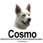 Cosmo Striking Terror