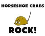 Horseshoe Crabs Rock!