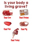 Are You a Living Grave? | Weird Vegetarian T-shirts & Apetizing Gifts