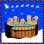 WHEATEN TERRIER: NORTHERN CALIFORNIA CHRISTMAS