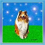 Collie Under the Stars