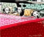 Dalmatians in Red Car