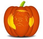 Pug Pumpkin