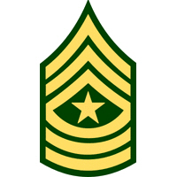 <P>3rd Infantry Division<BR>Rank Insignia