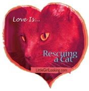 Love Is...Rescuing a Cat