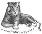 Tiger Rescue Part II, PAWSWeb.org