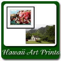Hawaii Art Prints